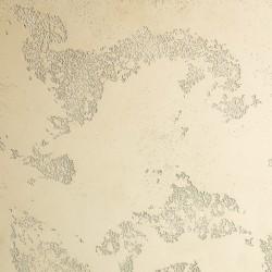 Пример нанесения фактурного покрытия - образец RA01-35