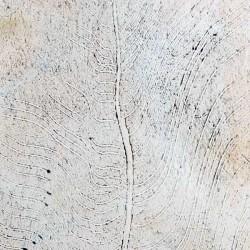 Пример нанесения венецианского покрытия - образец 08-81-03